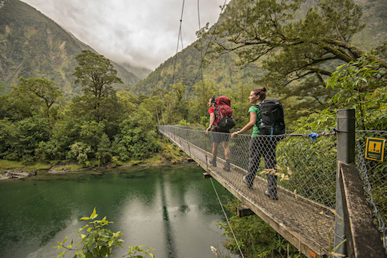 Mt Swing Bridge Ultimate Hikes